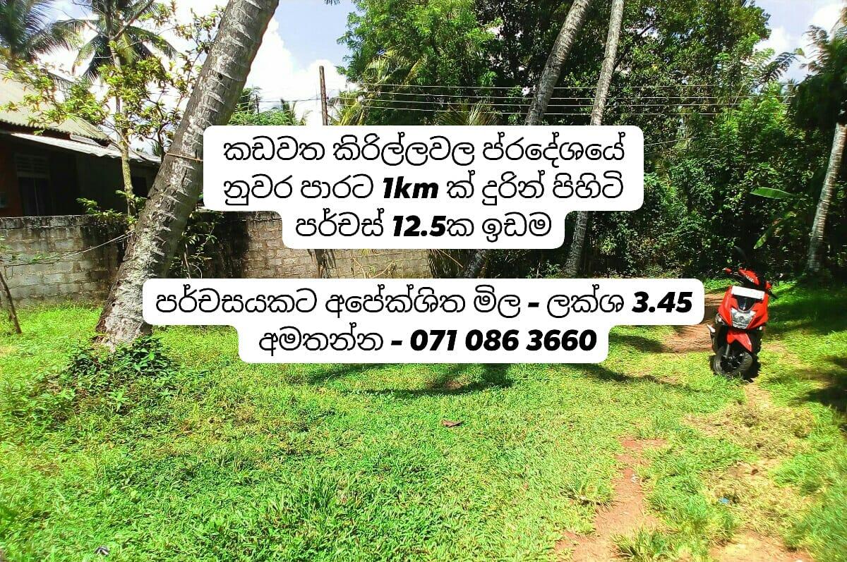 WhatsApp Image 2021 07 08 at 9.01.54 AM